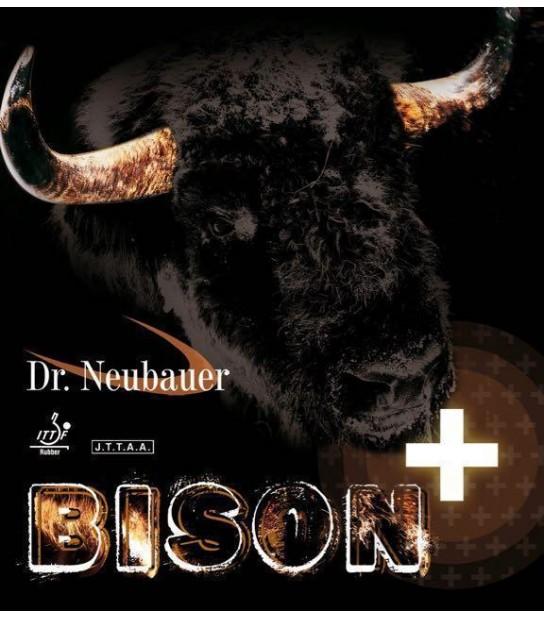 Dr Neubauer Bison +